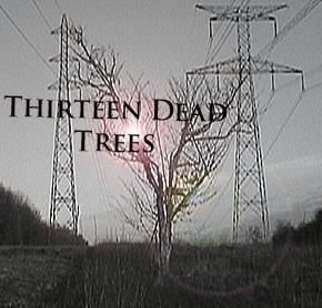 Photo de Thirteen Dead Trees